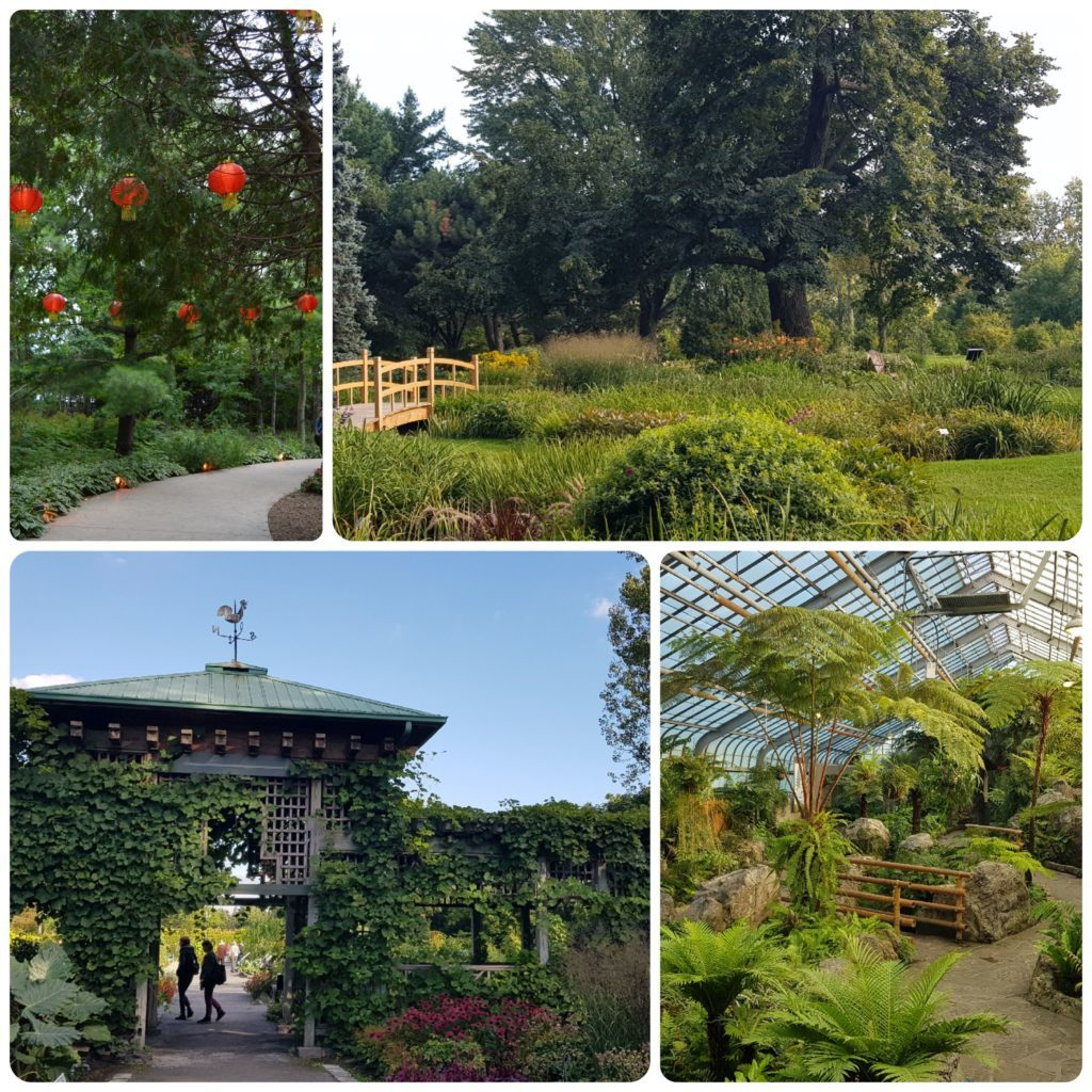 Botanical garden of the city of Montreal